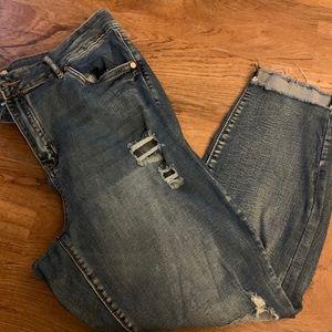 Refuge Women's Distressed Jeans Sz 18